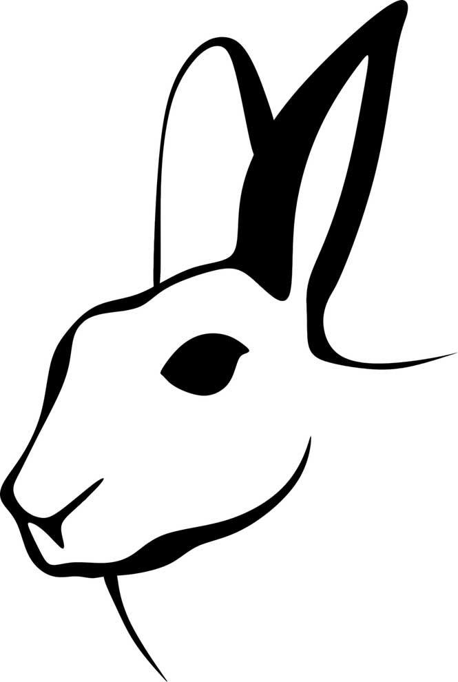 coelho para pintar