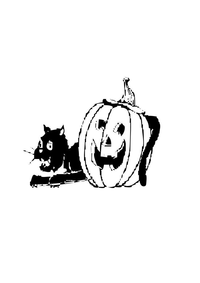 gato preto e abóbora