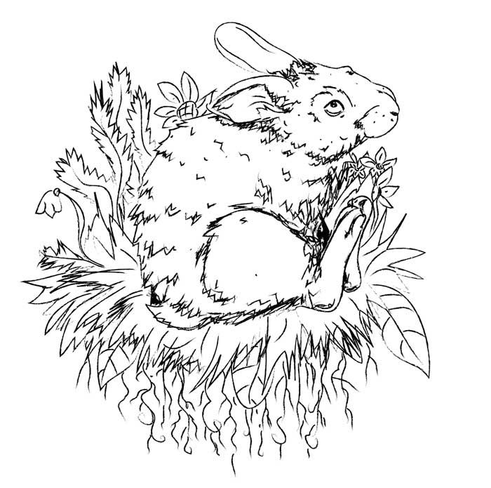 imagem de coelho para imprimir