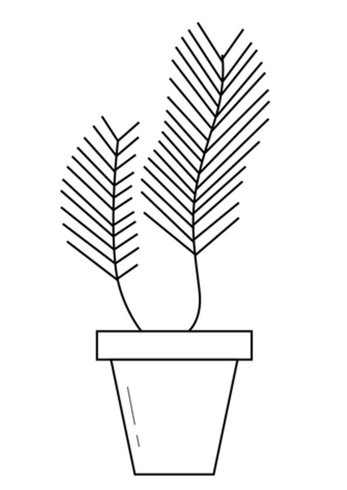 desenho de planta 19