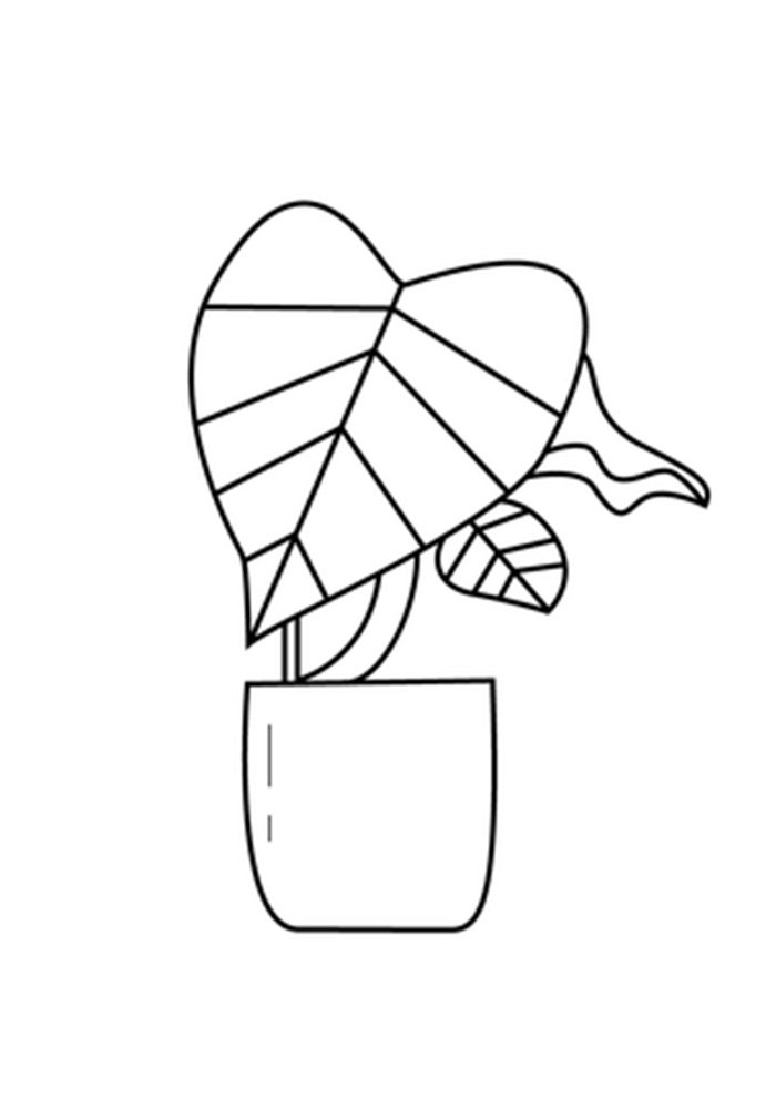 desenho de planta 6