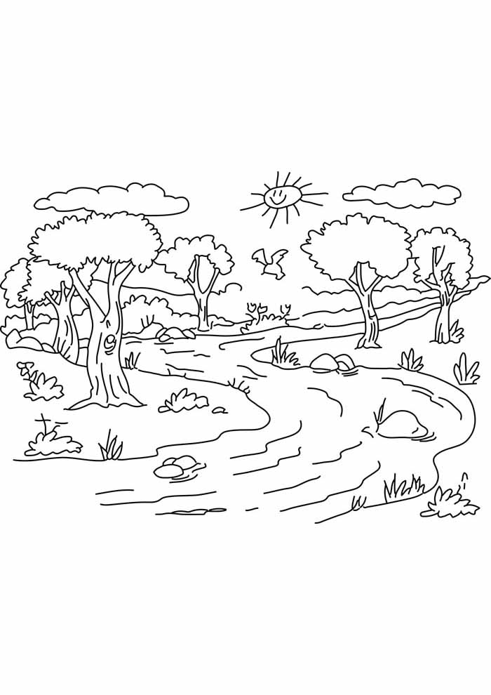 árvore para colorir beira rio