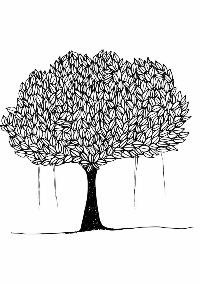 árvore para colorir cheia de folhas