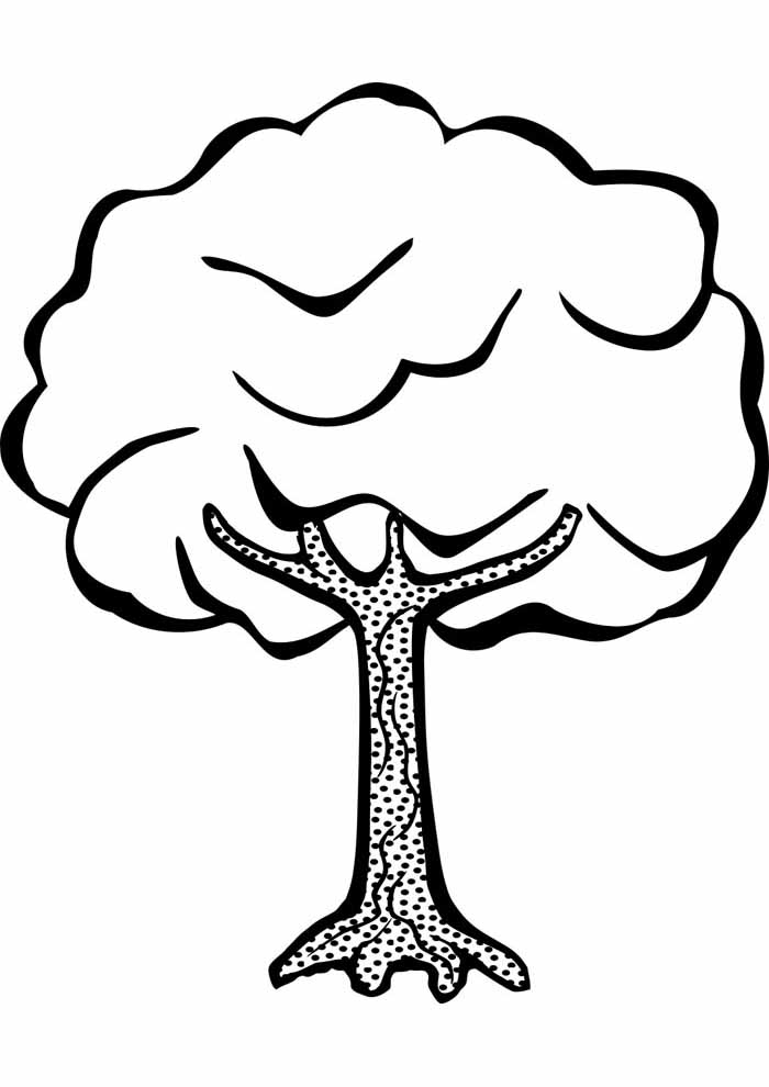 árvore para colorir cheia