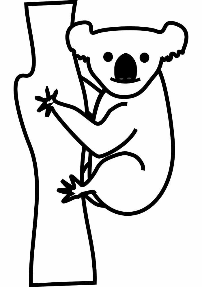 árvore para colorir com coala