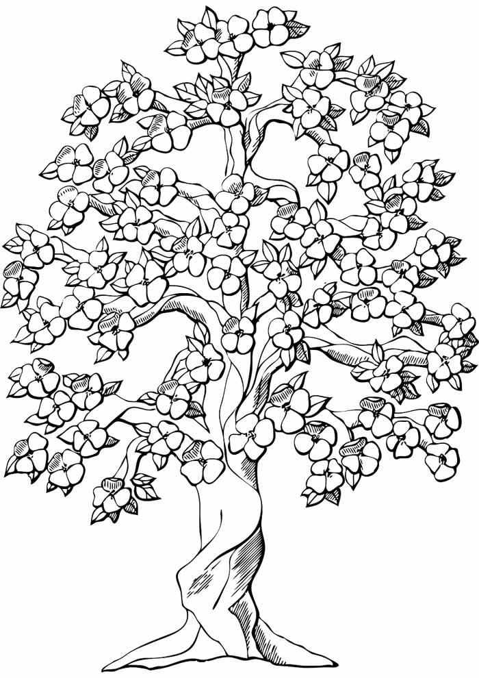 árvore para colorir com flores