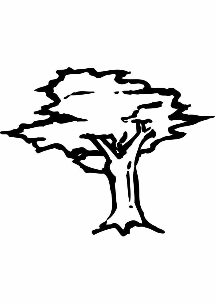 árvore para colorir desenho