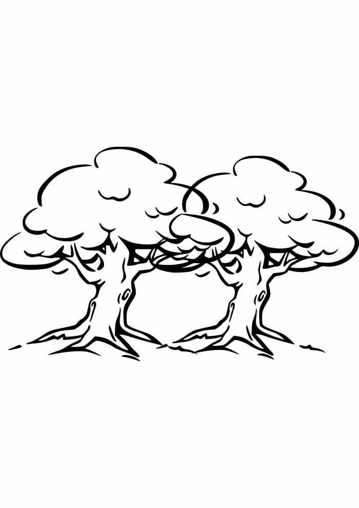 árvore para colorir dupla