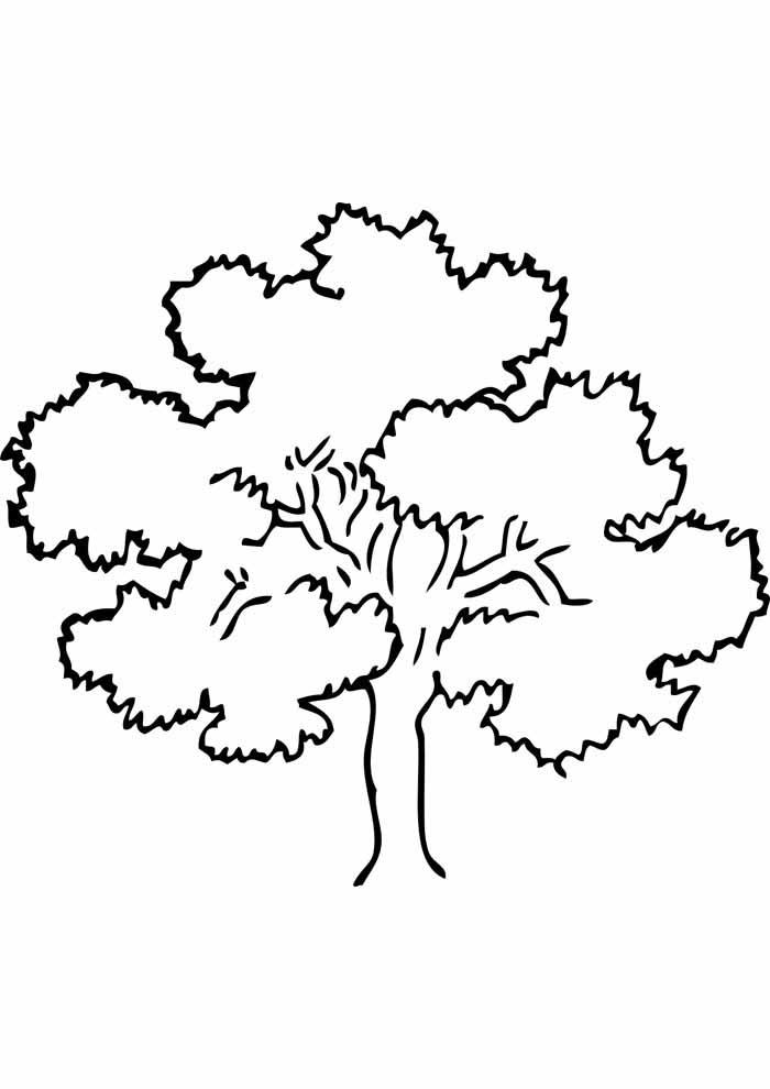 árvore para colorir grande