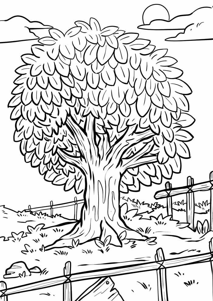 árvore para colorir sítio