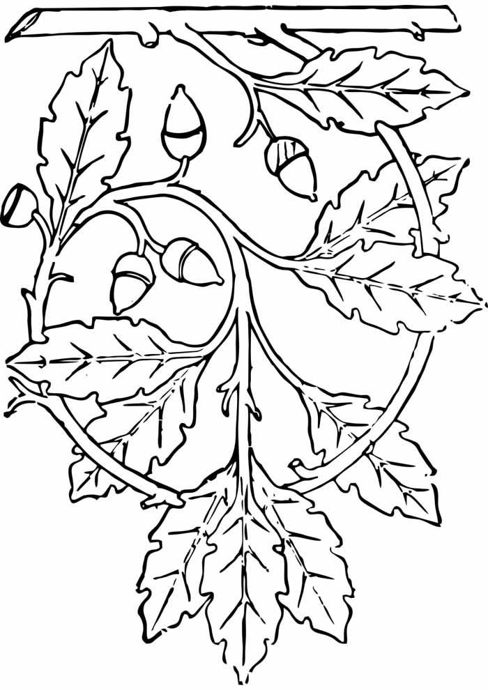 árvore para colorir suspensa