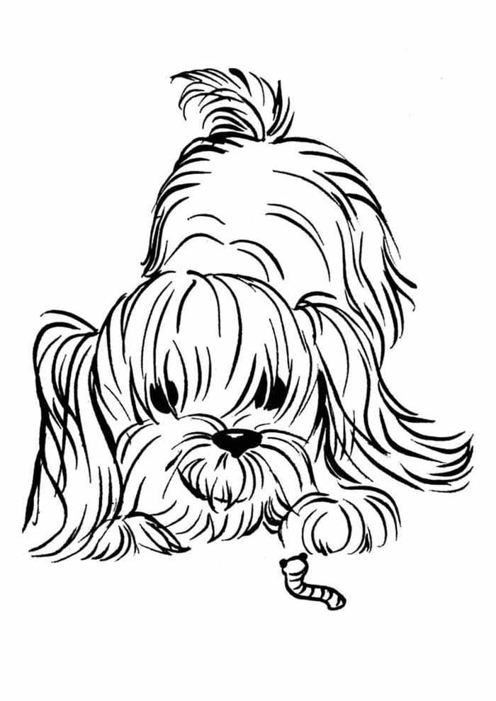 cachorro-para-colorir-brincando-com-a-minhoca