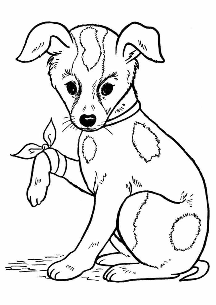 cachorro-para-colorir-com-a-pata-machucada