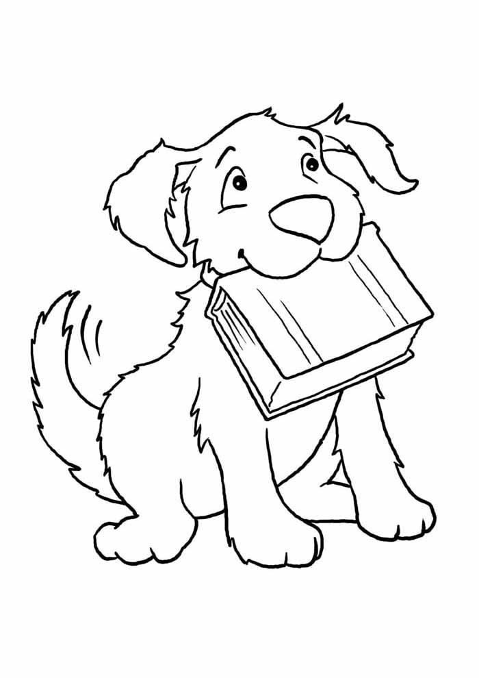 cachorro-para-colorir-com-livro-na-boca