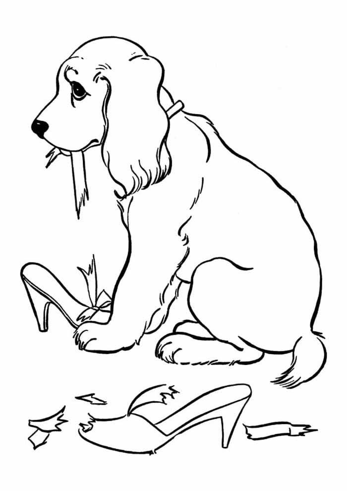 cachorro-para-colorir-comendo-sapatos