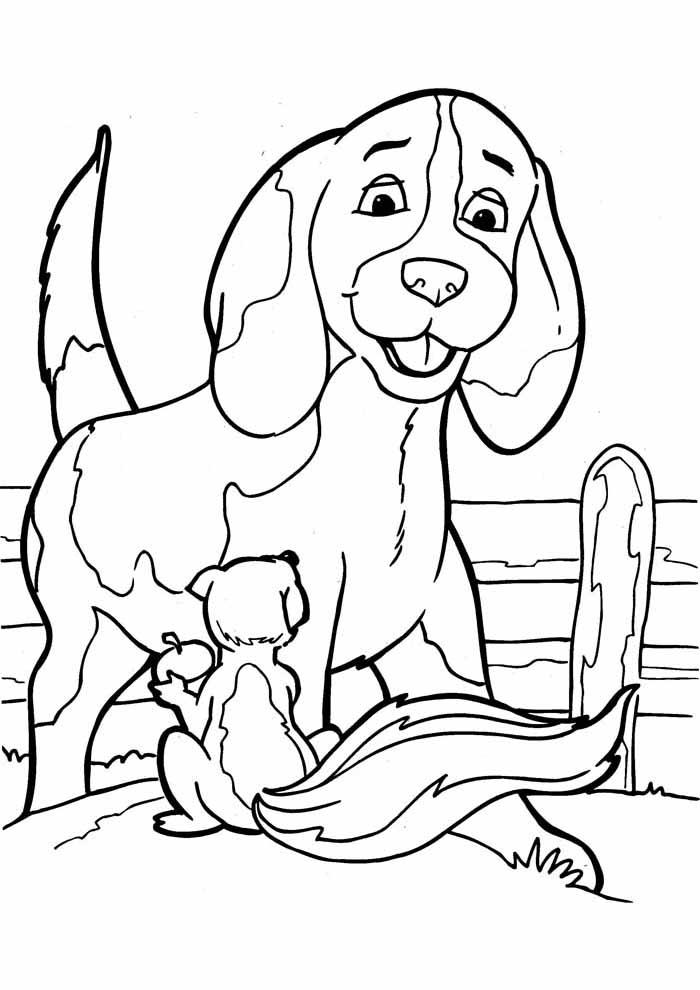 cachorro-para-colorir-e-esquilo