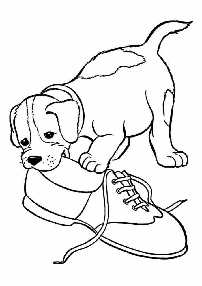 cachorro-para-colorir-mordendo-sapato