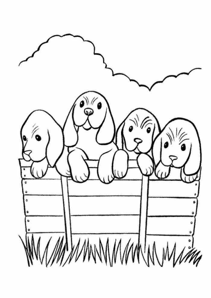 cachorro-para-colorir-na-cerca