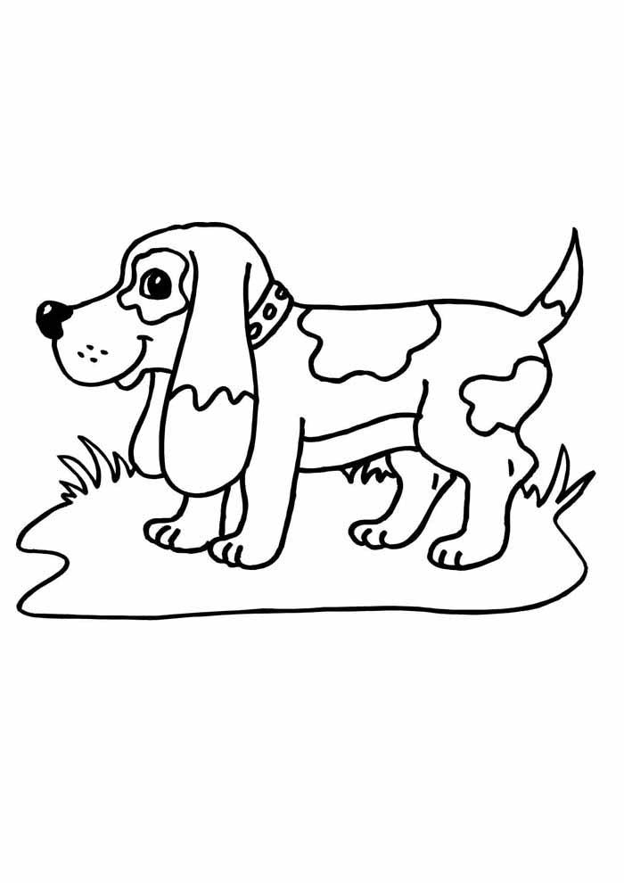 cachorro-para-colorir-na-grama
