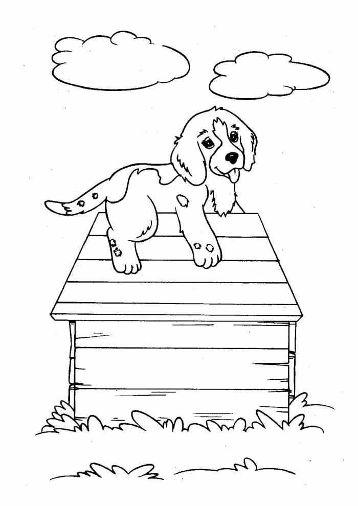 cachorro-para-colorir-no-telhado