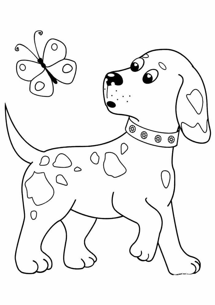 cachorro-para-colorir-olhando-borboleta