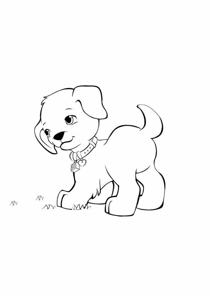 cachorro-para-colorir-olhando-para-o-lado
