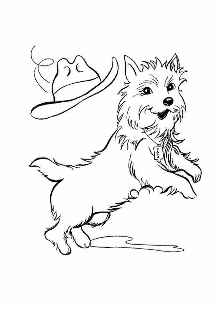 cachorro-para-colorir-pulando