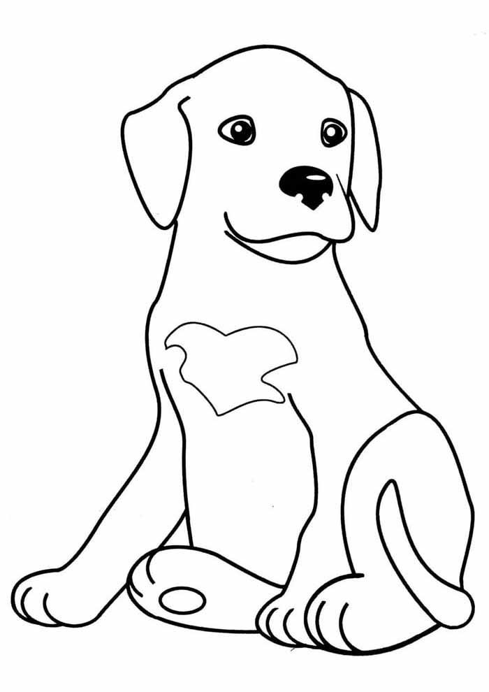 cachorro-para-colorir-sentando-olhando