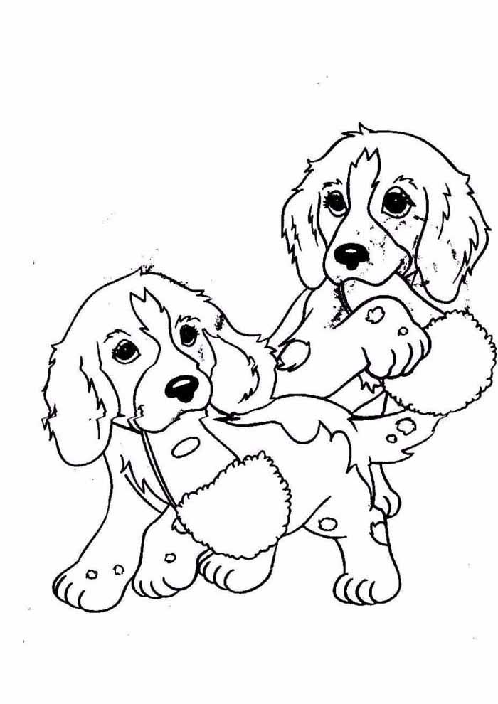cachorros-para-colorir-machucados