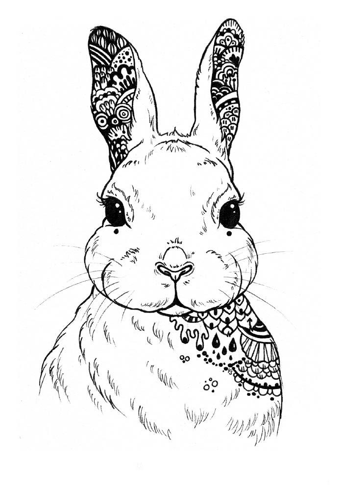 coelho-da-pascoa-para-colorir