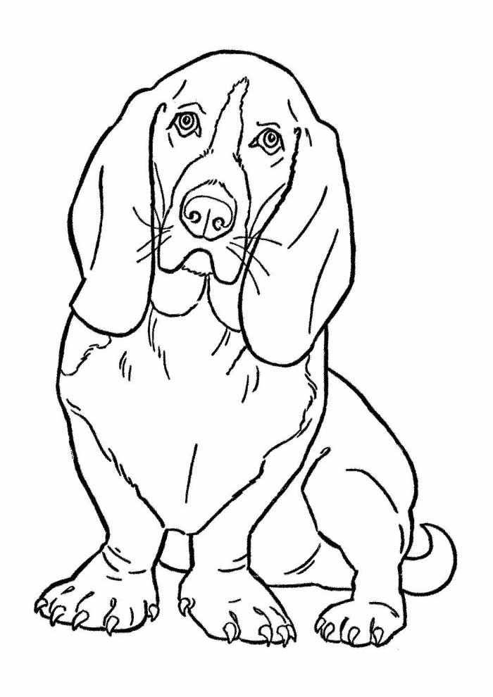 desenho-de-cachorro-para-colorir-grande