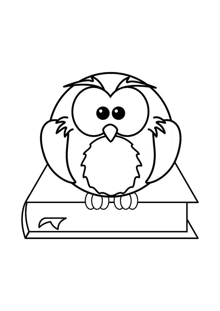 escola para colorir coruja sentada no livro