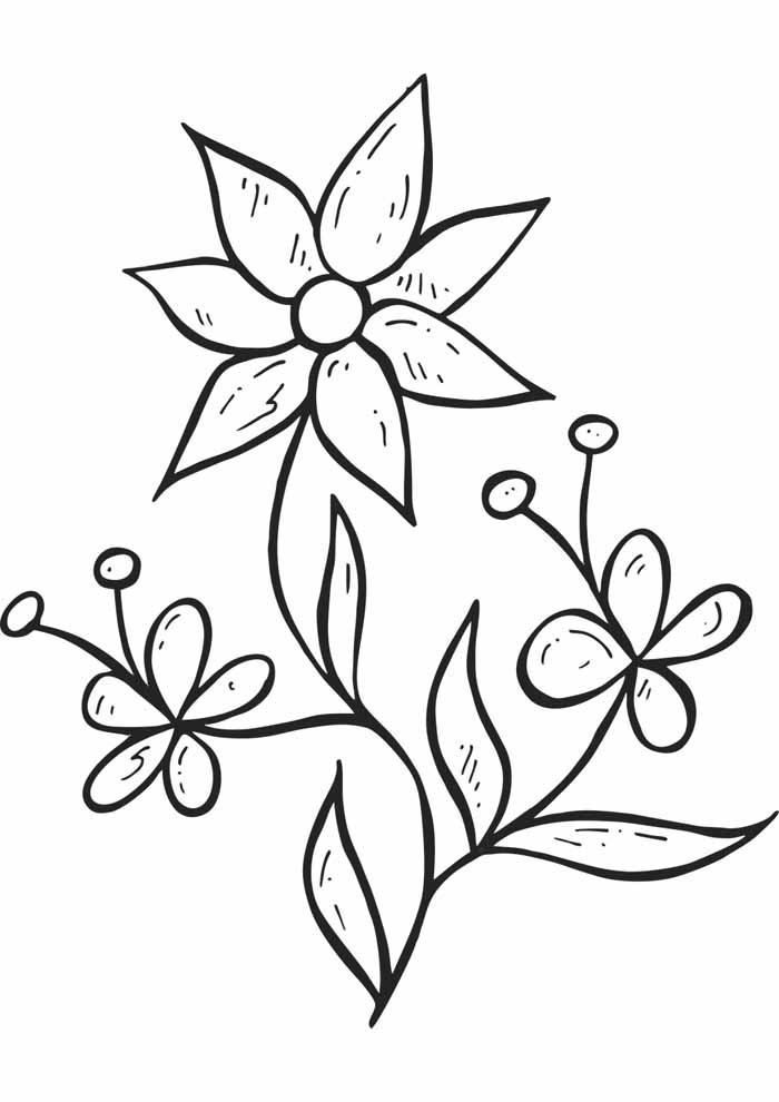 flores-para-colorir-com-tracos