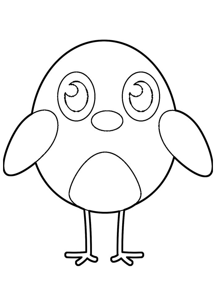 galinha para colorir 11
