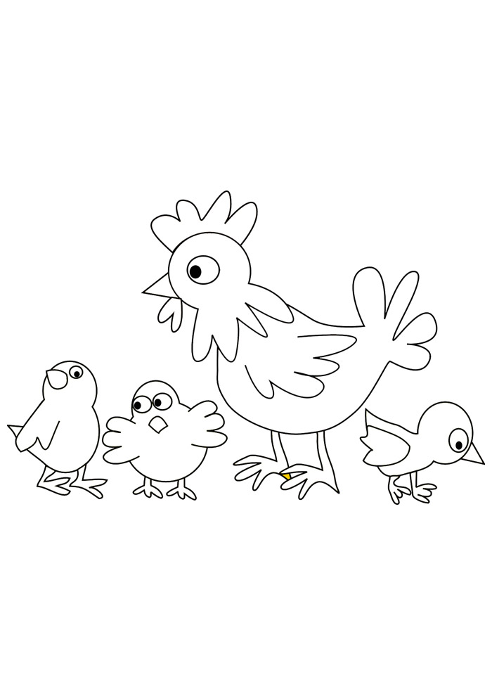 galinha para colorir 20