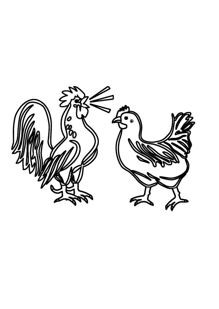 galinha para colorir 22