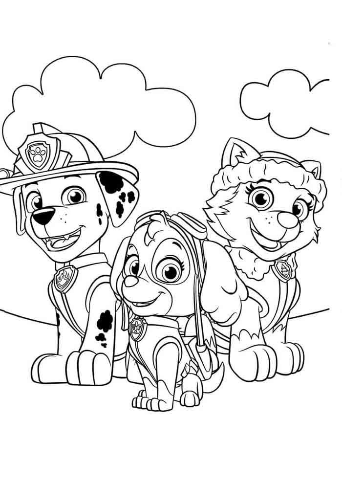patrulha canina para colorir marshall skye e everest