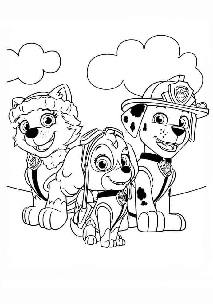 patrulha canina para colorir pintar