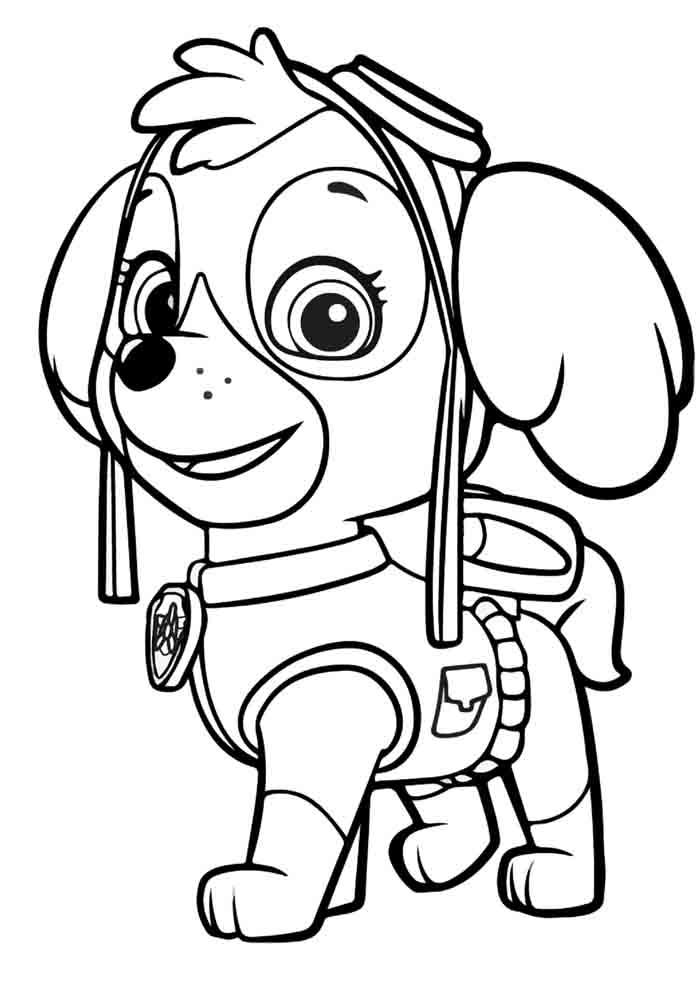 patrulha canina para colorir skye