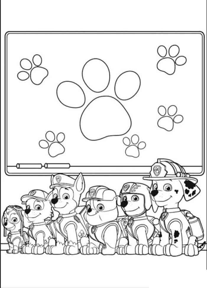 patrulha canina para colorir todos juntos
