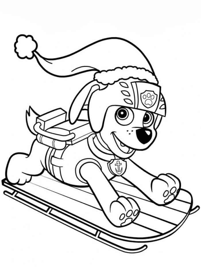 patrulha canina para colorir zuma de papai noel esquiando