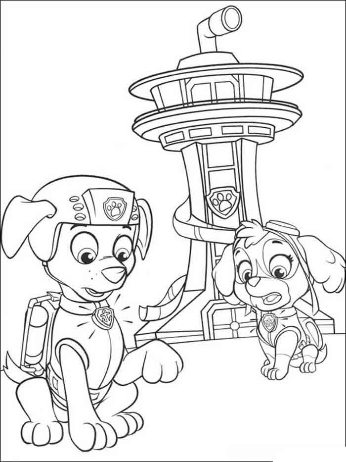 patrulha canina para colorir zuma e skye assustada
