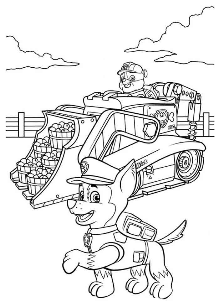 patrulha canina para imprimir e colorir