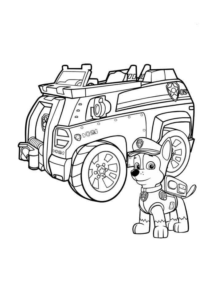 pintar patrulha canina