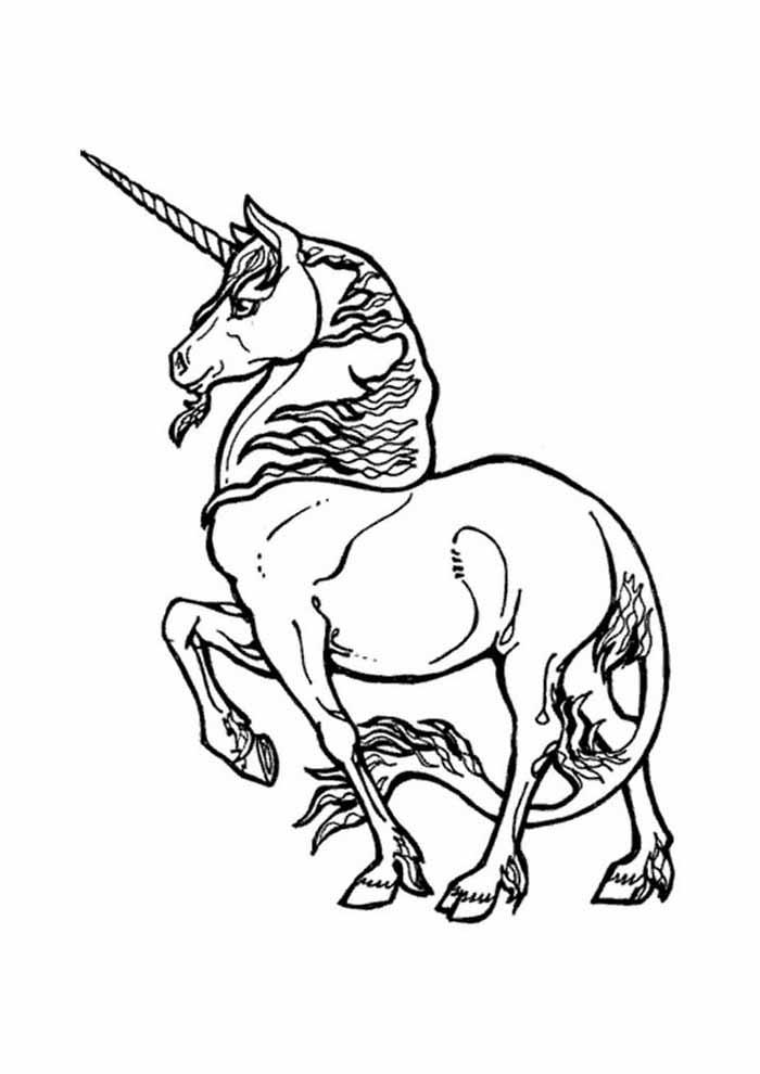 unicornio para colorir 63