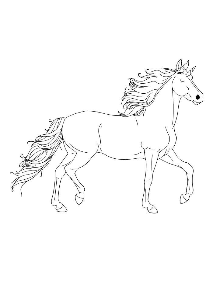 unicornio-para-colorir-macho-elegante