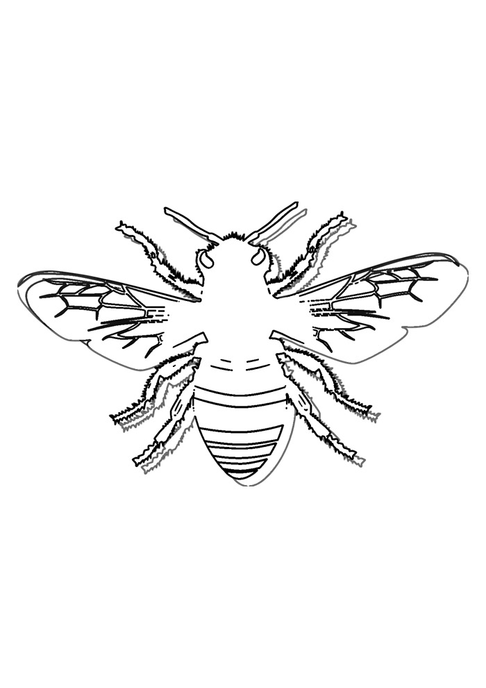 abelha para colorir 38