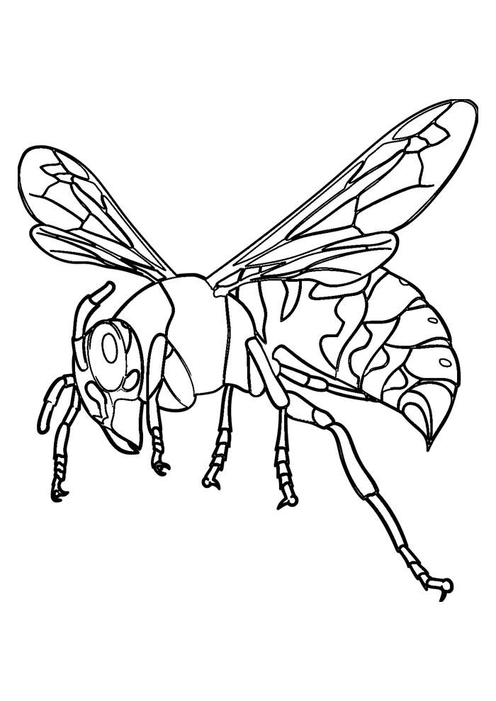 abelha para colorir 40