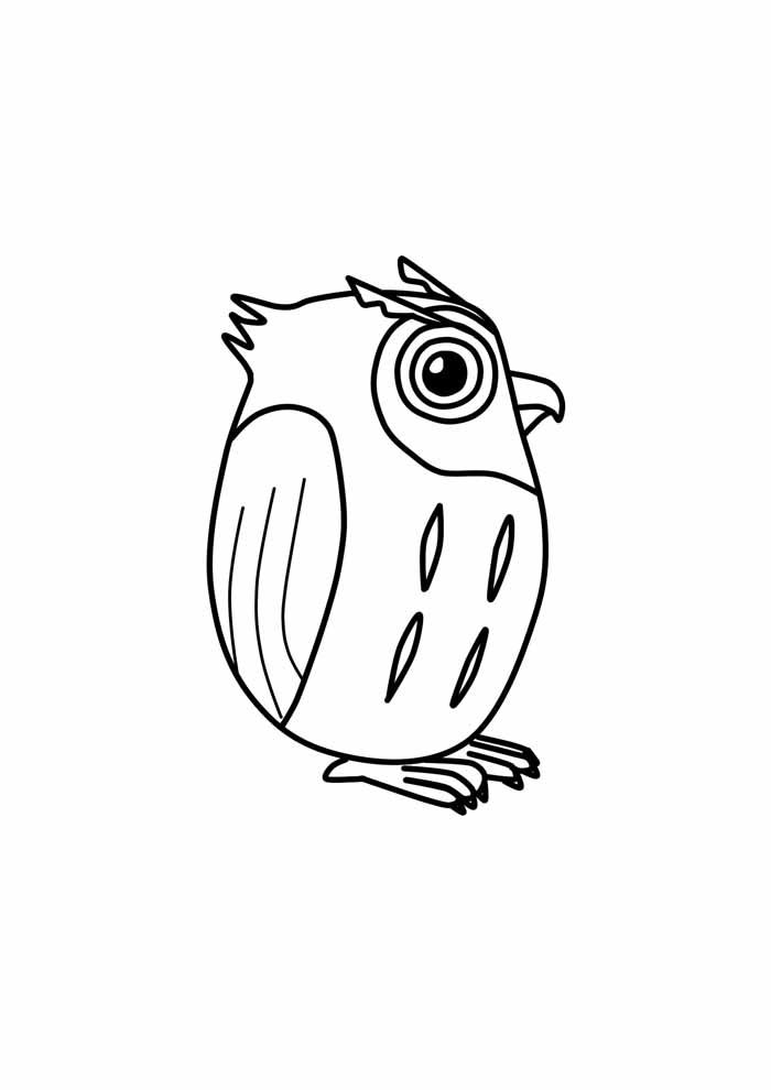 coruja para colorir 32