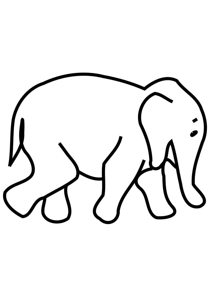 elefante para colorir 20